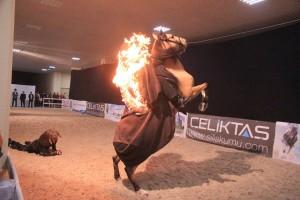 Uluslararası At ve Binicilik Fuarı EQUİST